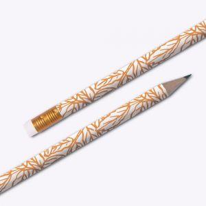 Crayon Fougère Editions du...